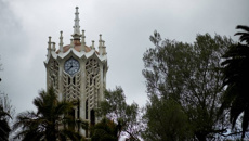 University of Auckland fall a 'big blow'