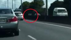 Watch: Car speeds wrong way up Southern Motorway