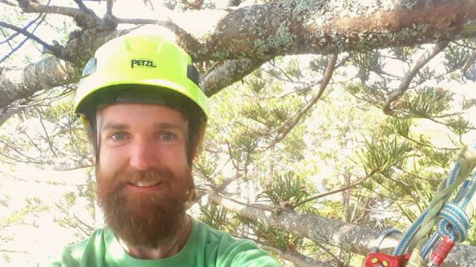 Charlie Cottrell-Jury says he has a hammock and is prepared to stay the night in the tree (Photo: Supplied/NZ Herald)