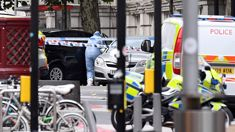 Car hits pedestrians near famed London museum