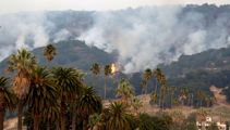 Fears world famous wineries were destroyed in California wildfires