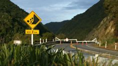 Shortlist of Manawatu Gorge options released