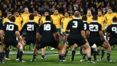 The Wallabies defeated the All Blacks (Image / Getty Images)