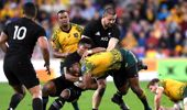 Marika Koroibete of the Wallabies is tackled during the Bledisloe Cup match between the Australian Wallabies and the New Zealand All Blacks at Suncorp Stadium on October 21, 2017 in Brisbane, Australia. (Photo \ Getty Images)