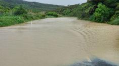 Waikato drivers warned to take extreme caution due to flooding