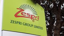 SFO ends six-year Zespri investigation with no charges