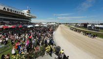 Police to breath-test racegoers ahead of Addington Cup