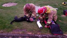 Dog alive! Hero firefighters save the life of Molly the dog after house fire in Tokoroa