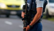 Armed police search Upper Hutt property