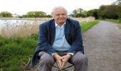 Sir David Attenborough (Photo: Getty Images/Canvas)