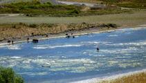 Million dollar bill to fix Hawkes Bay water treatment plant