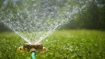 Dry weather causes outdoor water ban in Wellington
