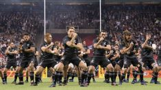 Cultural background affects rugby style: Study