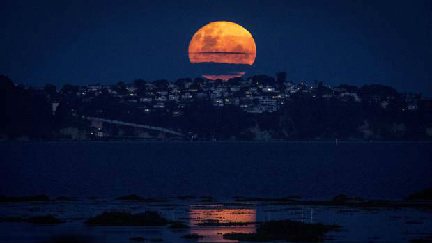 Watch: Glorious supermoon rises over Auckland