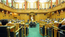 Parliament debates family package bill