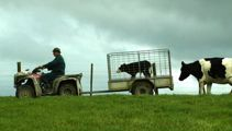 Farmers urged to speak out during stressful Christmas period