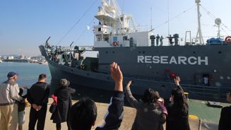 New Zealand 'strongly disapproves' of Japan's whaling