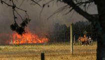 Large scrub fire in Rolleston