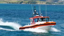 Diver dies after surfacing unconscious near Kawau