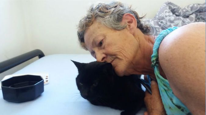 Donations are pouring in for Jan Walton to pay for surgery on her cat. (Photo \ NZ Herald)