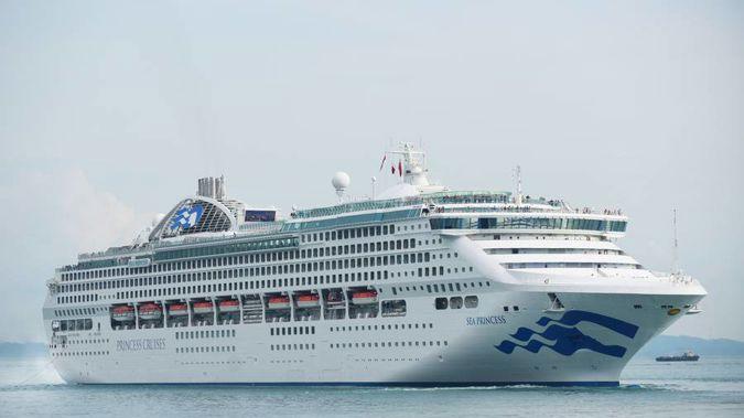 Hundreds Sick With Gastro On New Zealand Cruise Ship - New zealand cruise