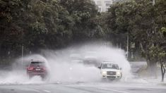 NIWA 'more storms likely'