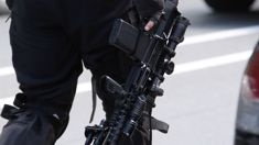 Armed police block road in Tauranga