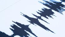 4.5 quake jolts upper South Island