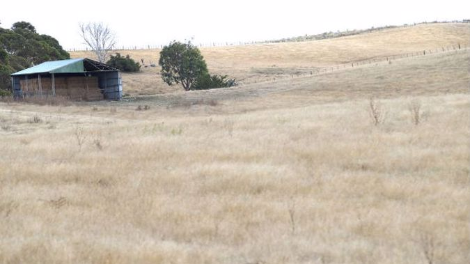 The Grey and Buller districts are the latest areas to be affected by drought. (Photo \ Duncan Brown)
