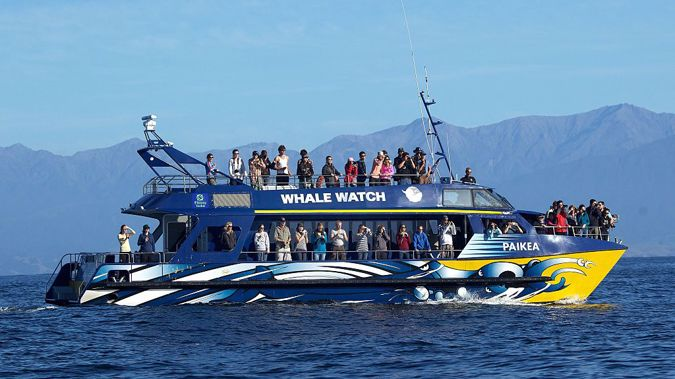 Kaikoura Whale Watch boat. (Photo \ Getty Images)