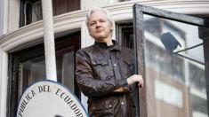 Stoush brews over diplomatic immunity for Assange