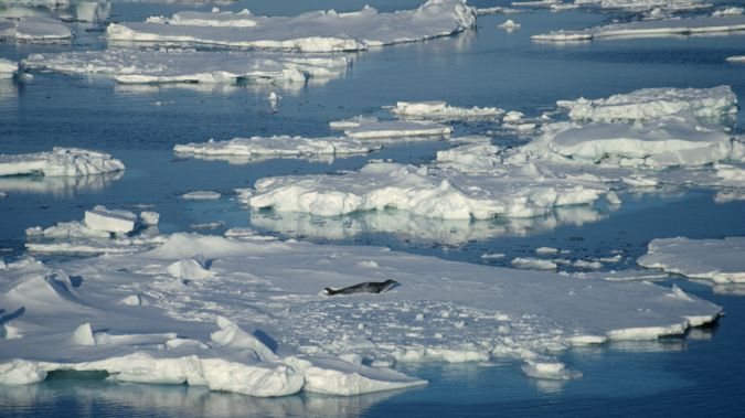 The Weddell Sea will be explored for the first time. (Photo / Getty)