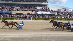 For the first time in 117 years the public may be shut out of Canterbury's annual Cup and Show Week. (Photo / Supplied)