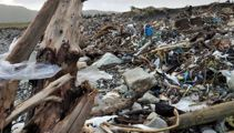 West Coasters mucking in to clear loads of rubbish from storm