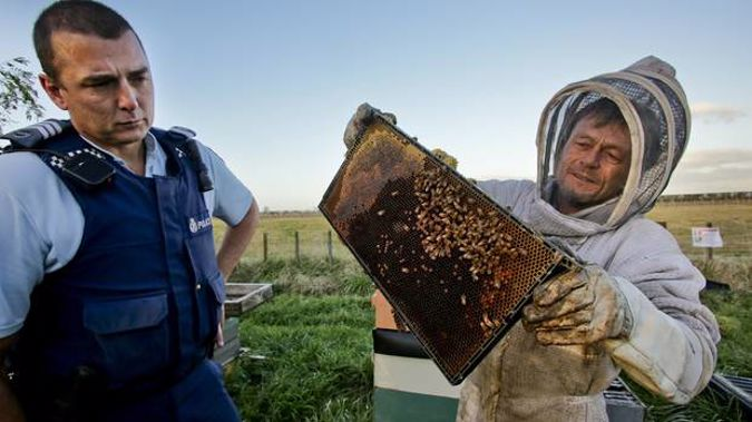 Sergeant Andrew Graham and Bryan Rogers of Beagle's Bees check some hives after 38 were stolen near Hastings in July 2016 (Warren Buckland)