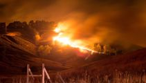Port Hills blaze: what has been learnt one year on?