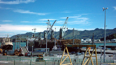 Lyttleton Port worker ready to strike
