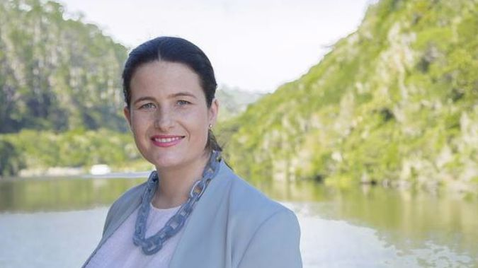 Nicola Willis nearly made it into parliament before special votes were counted. (Photo / File)
