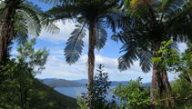Mike Yardley: Queen Charlotte Sound