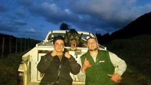 Keen pig hunters Theo and Chad Scrivener have had their pig dogs burned alive by thieves (Image / File)