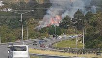 Bush fire closes part of SH1 in Wellington