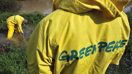 Sue Parker: People should be outraged by Greenpeace being denied charity status
