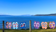 Could our changing multi-cultural migration change how we view Kiwiana? (Photo \ Getty Images)