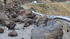 More than 450 properties in the Port Hills have been cleared since the Canterbury earthquakes and LINZ has been responsible for replanting and maintaining the sites where houses can no longer be built due to rock fall and cliff collapse. (Photo \ NZ Herald)
