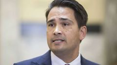 National Party leader, Simon Bridges, says Marama Davidson's election is a 'move to the left' for the Green Party. (Photo: File)