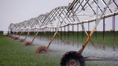 Mike's Minute: It's simple - farms need water