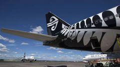 It is the latest incident to see a plane disrupted by on the ground interference. (Photo / NZ Herald)