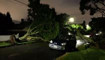 Auckland properties without power now fewer than 1000