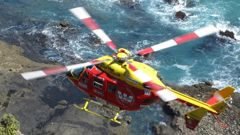 There are renewed pleas to keep the Coromandel's only air ambulance service following a horror crash near Thames last night. (Photo: Supplied)