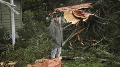 Matt Petuha in front of his family's rented Te Puke home surrounded by the remains of a tree struck by lightning. (Photo / NZ Herald)